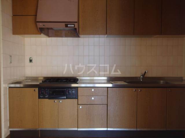 グリーンテラス豊ヶ丘3-1-3号棟 304号室のキッチン