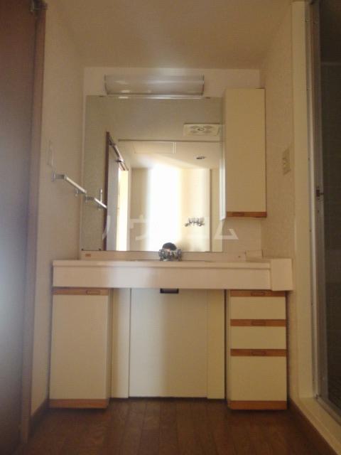 グリーンテラス豊ヶ丘3-1-3号棟 304号室の洗面所