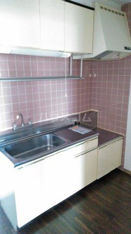 メゾンラフォーレⅡ 302号室のキッチン
