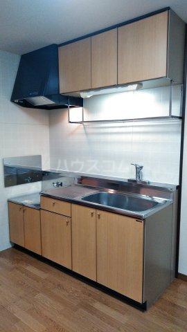 ピースフルハイツ 203号室のキッチン