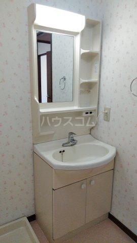 ピースフルハイツ 203号室の洗面所