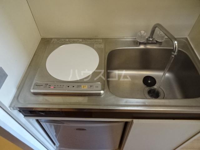 ビアメゾン高幡不動 207号室のキッチン