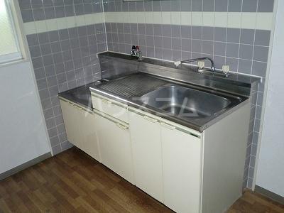 ニューシティ藪田 202号室のキッチン