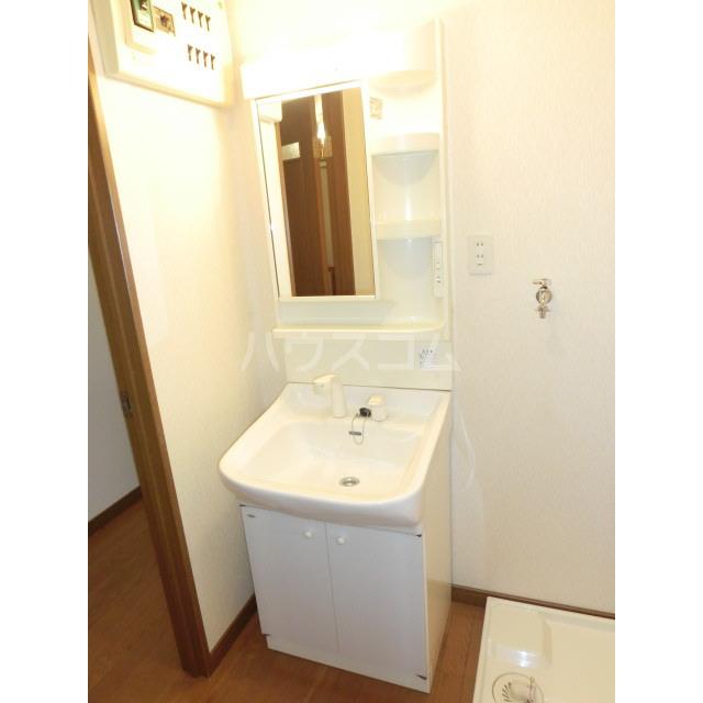 アネックス千寿 303号室の洗面所