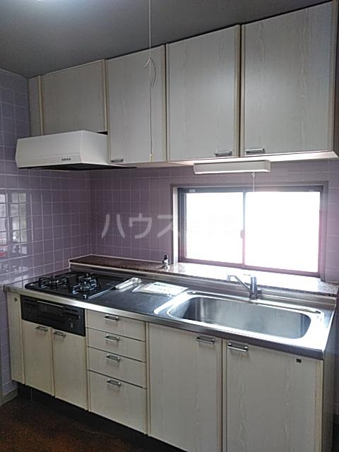 ハイメゾン橋本六 303号室のキッチン