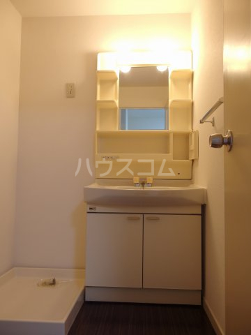 スターライトヴィラ2 305号室の洗面所