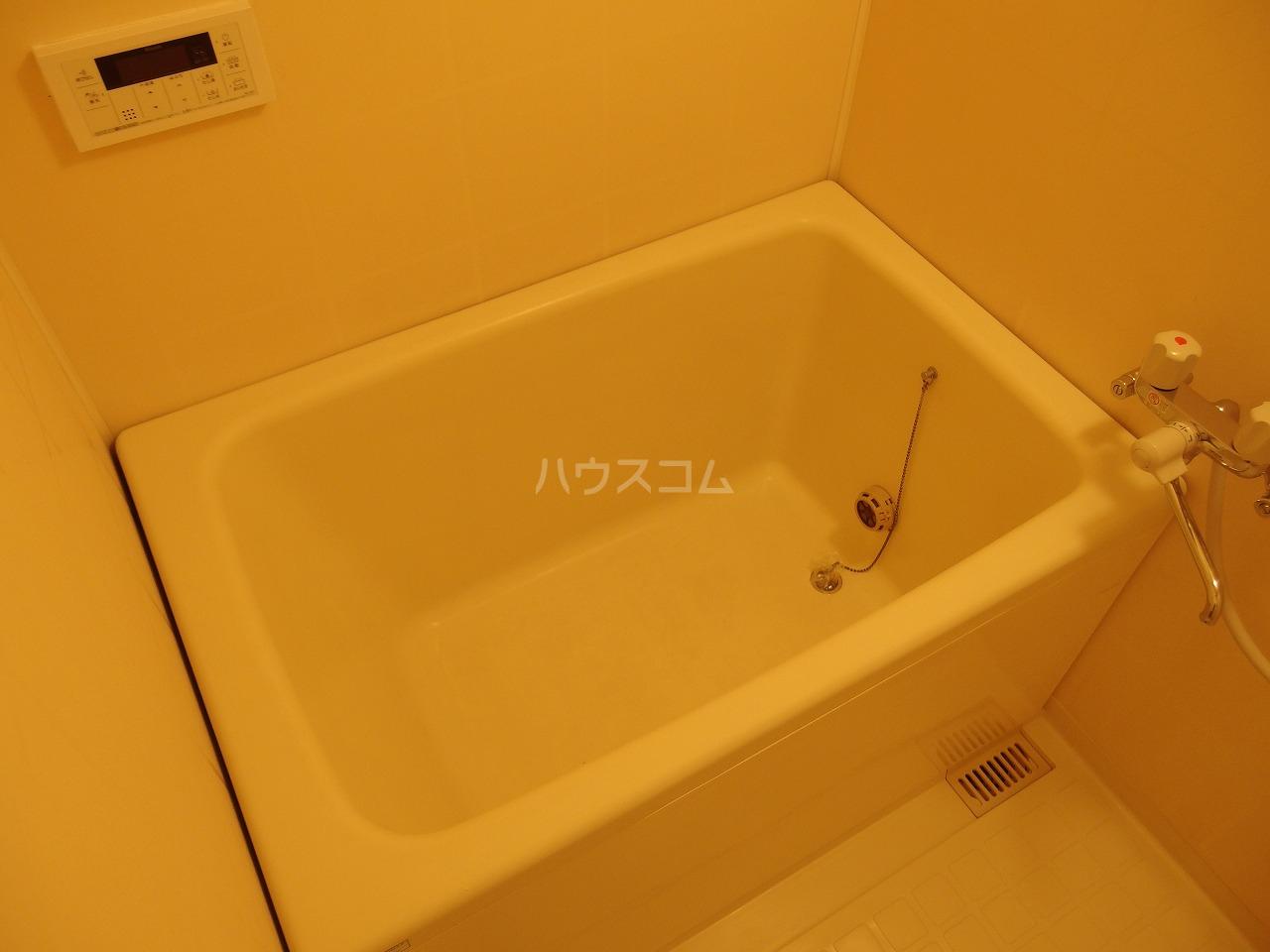 スターライトヴィラ2 202号室の風呂