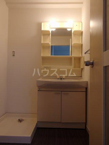 スターライトヴィラ2 202号室の洗面所