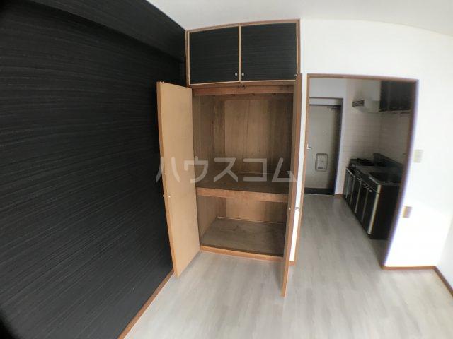 長沼田口ハイツ 303号室の収納