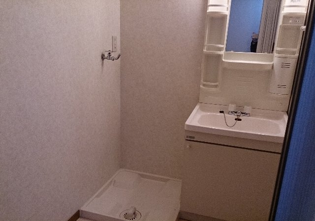 ルベルアジュ 203号室の洗面所