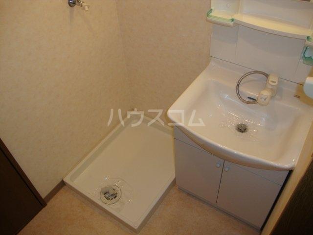 ルミナス押沢台 203号室の洗面所