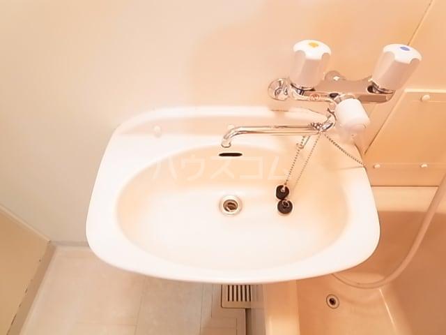 ランドロードヌマタA 02030号室の洗面所