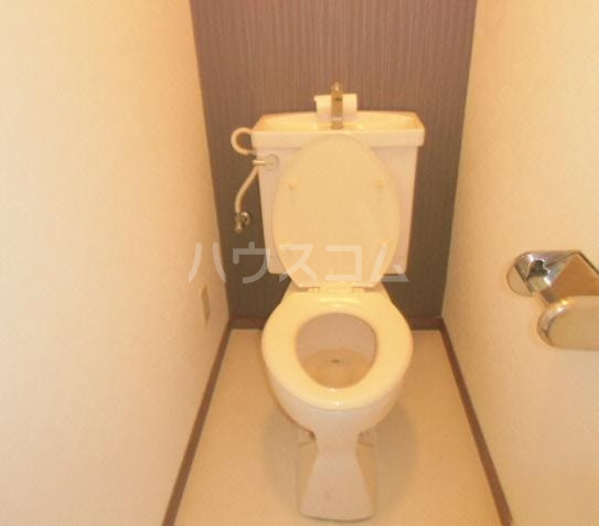 グレース犬山Ⅱ 103号室のトイレ