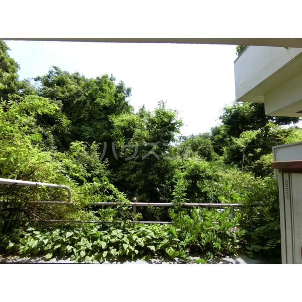 聖蹟桜ヶ丘ガーデンホーム 203号室の景色