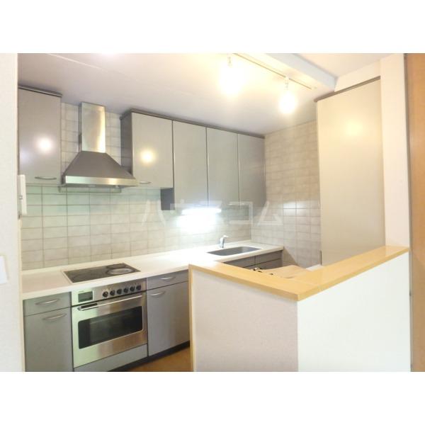 聖蹟桜ヶ丘ガーデンホーム 203号室のキッチン