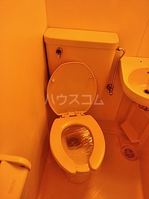 大豊マンション 206号室のトイレ