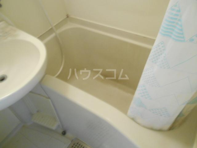 ビアメゾン高幡不動 303号室の風呂