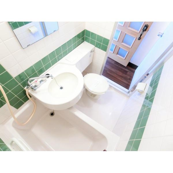 ライオンズマンション聖蹟桜ヶ丘第3 101号室の風呂
