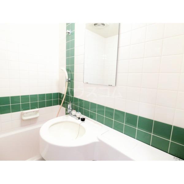 ライオンズマンション聖蹟桜ヶ丘第3 101号室のトイレ