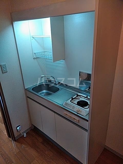 ヴィラコンテッサ原 205号室のキッチン