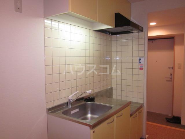 I's Villa Annex 205号室のキッチン