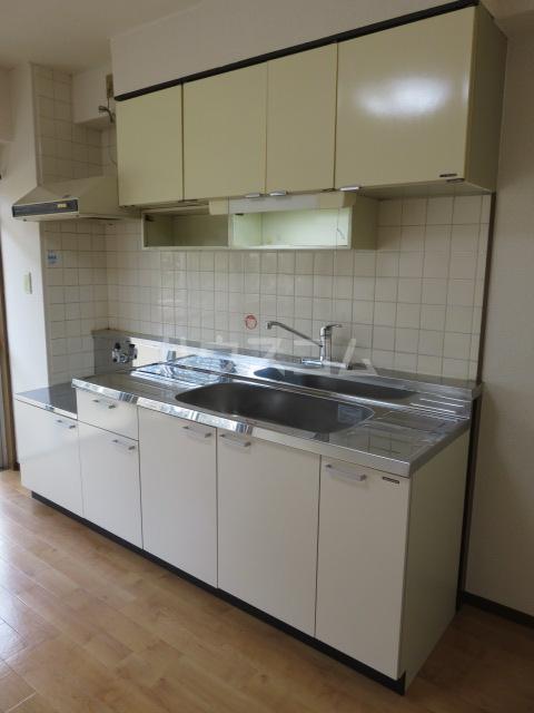 パークサイド城北 203号室のキッチン