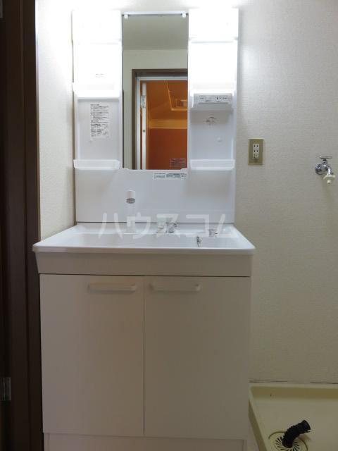 パークサイド城北 203号室の洗面所