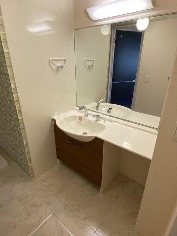 サンフローラ 101号室の洗面所