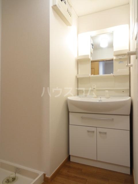 プラシード・Ⅱ 02030号室の洗面所