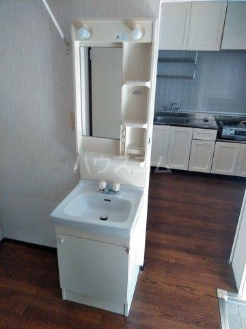 ベルシェ松井 105号室の洗面所