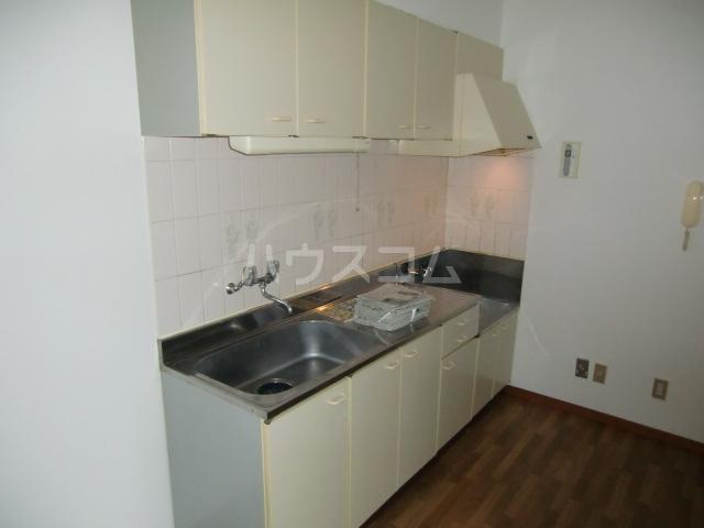 サングリーンメゾン 4B号室のキッチン