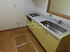 新田ビレッジパインビュー館 305号室のキッチン