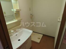 新田ビレッジパインビュー館 305号室の洗面所