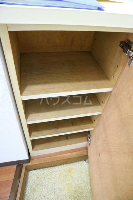 コンフォートマンション北戸田 538号室の収納