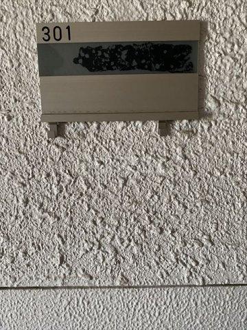 南浦和クイーンコーポB棟 301号室の設備