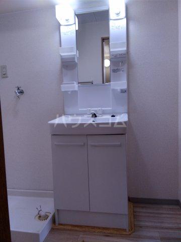 ア・ドリーム鷺山 302号室の洗面所
