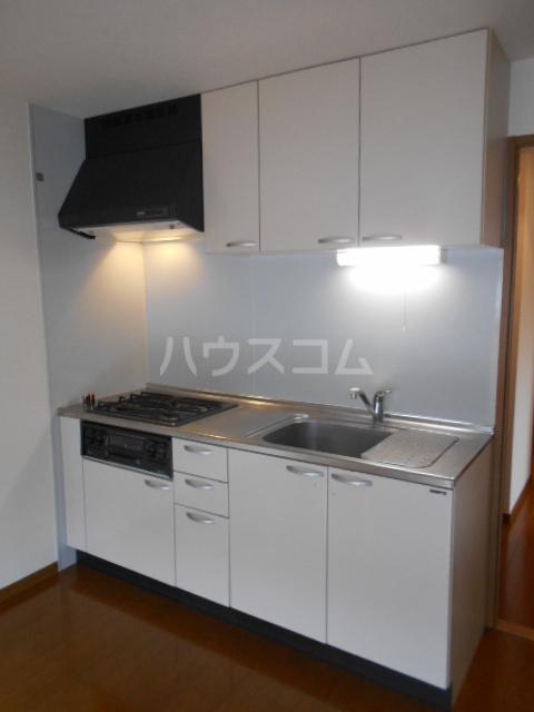 グランデール秀峰Ⅱ 101号室のキッチン