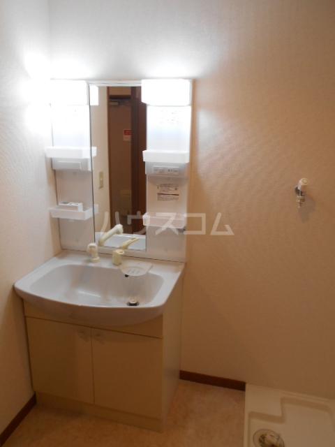 グランデール秀峰Ⅱ 101号室の洗面所
