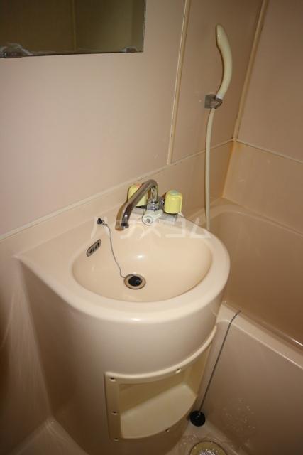 レジデンス清水 301号室の洗面所
