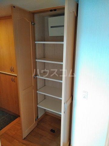 東川口ガーデンヒルズ七番館 603号室の収納