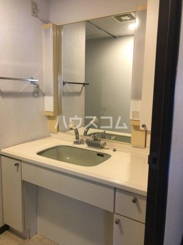 ドルフヤマノウチA 101号室の洗面所