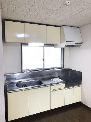 リバティアージュ 205号室のキッチン