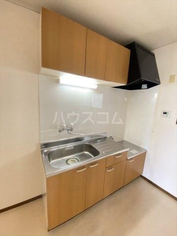 スカイフラット野口 202号室のキッチン