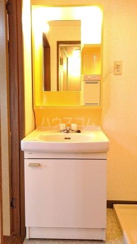 メゾンド・パーシモン 401号室の洗面所