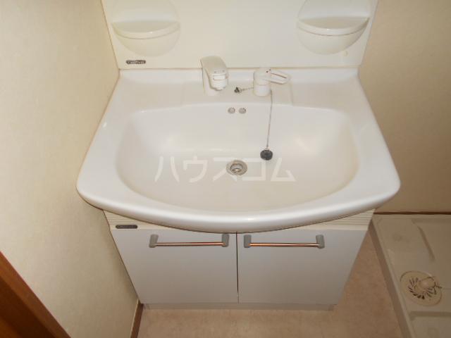サンエイハイツ 202号室の洗面所