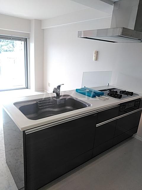 アルコリバーサイド 302号室のキッチン
