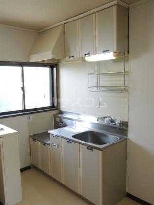 ヤマキ 203号室のキッチン