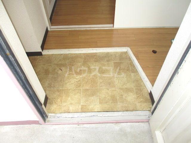 グレイス第3マンション 218号室の玄関