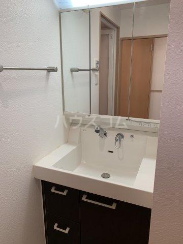 カーサピーノ 1002号室の洗面所