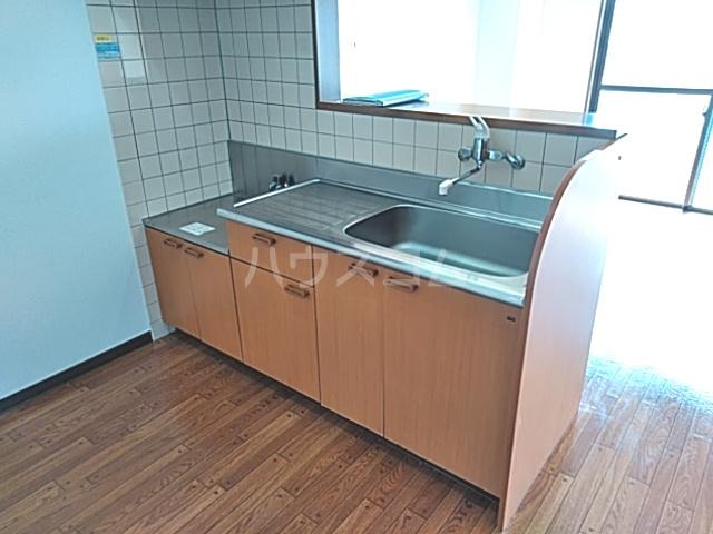Bo Pierre K号室のキッチン